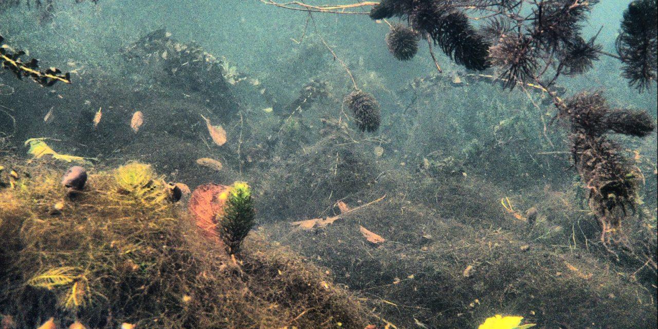 Podwodna Radunia