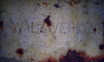 Galeria – Pruszcz pod Lupą
