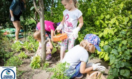 Lekcja 5. – przedszkolaki o tym, jak dbać o naszą okolicę