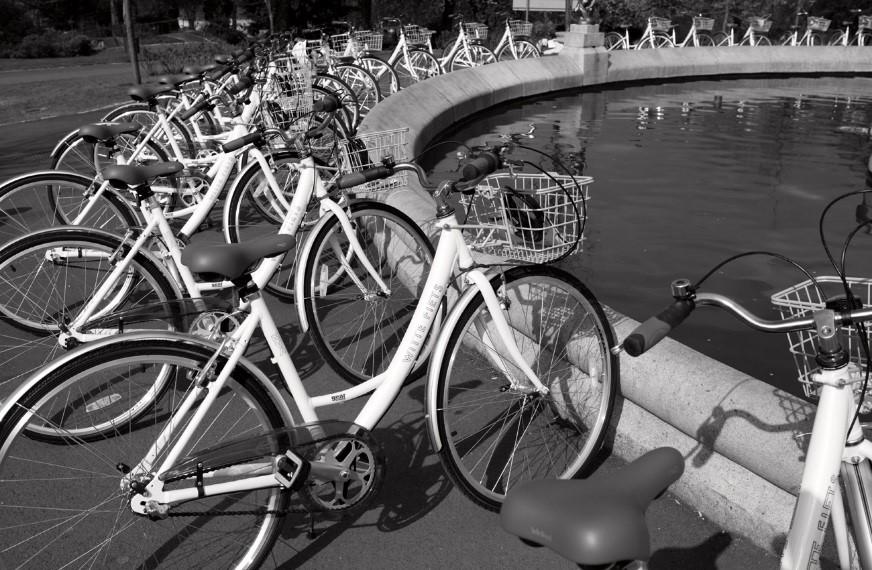 Budowa Systemu Roweru Metropolitalnego na sesji Rady Miasta