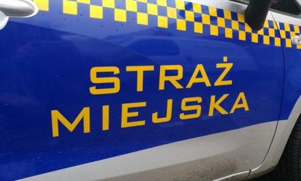 Samochód Straży Miejskiej bez homologacji