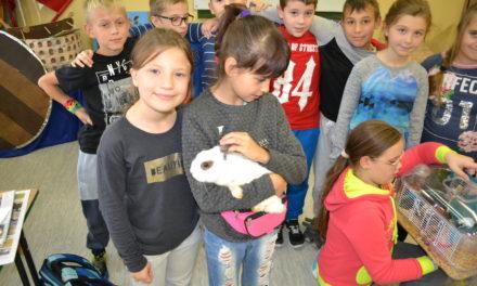 Dzień Zwierząt w klasie 4 a
