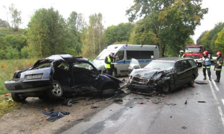 Śmiertelny wypadek na drodze wojewódzkiej nr 221