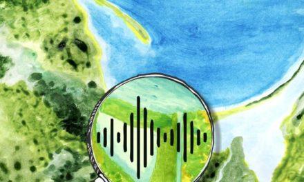 Brzmienie wody słonej i słodkiej. Jakie dźwięki wydaje Wisła?