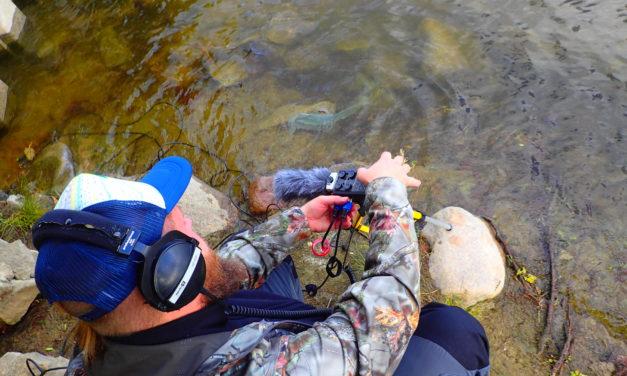 Fotorelacja z nagrywania dźwięków wody. Wkrótce audycja w radiu!