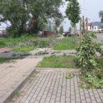 Nawałnica nad Pruszczem Gdańskim