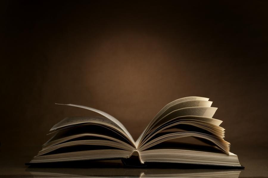 Książki w formie cyfrowej w pruszczańskiej bibliotece