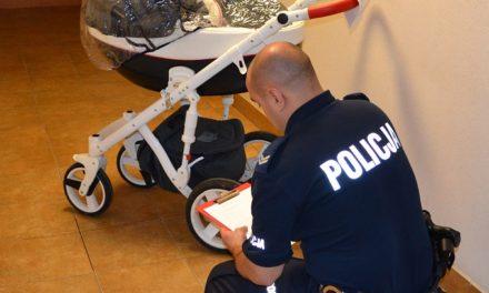 Policjanci zatrzymali sprawców kradzieży