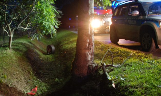 Policjanci ustalają przyczyny śmiertelnego wypadku drogowego